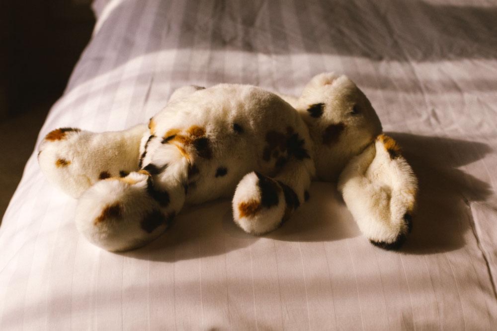 pelliccia shanghai